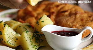 Salzburg recipes cooking austrian food for Austrian cuisine history